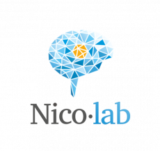 Nico.lab Fundraising Ahead of IPO for Stroke Treatment Technology