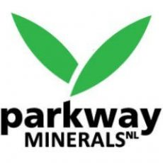 Parkway Minerals (ASX: PWN) Granted Patent for Potassium Recovery