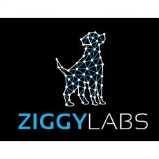 ZiggyLabs completes study which provides evidence of anti-cancer potential drugs for animals